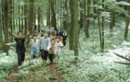 森のトレッキングコース